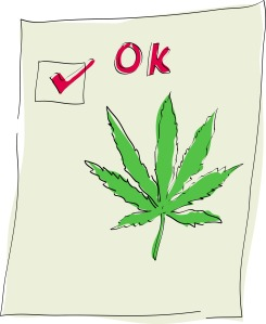 cannabis-leaf-with-tick-mark_GkU0Hw8O