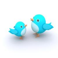 blue-cute-birds_fkYLwUud